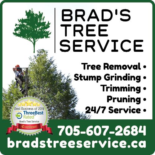 Brad's Tree Service - BAG-HH-MIN-BAR-ON-2C