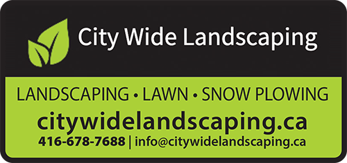 City Wide Landscaping BAG-FD-GEORG-ON-1