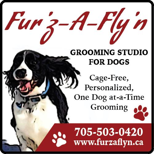 Fur'z-A-Fly'n BAG-HH-KING-ORIL-ON-2