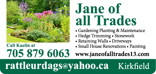 Jane Of All Trades - BAG-YIG-BEAV-ON-1