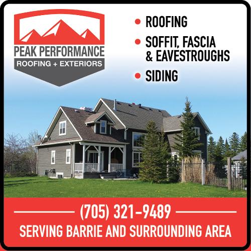 Peak Performance Roofing BAG-HH-IBRD-INN-ON-2C