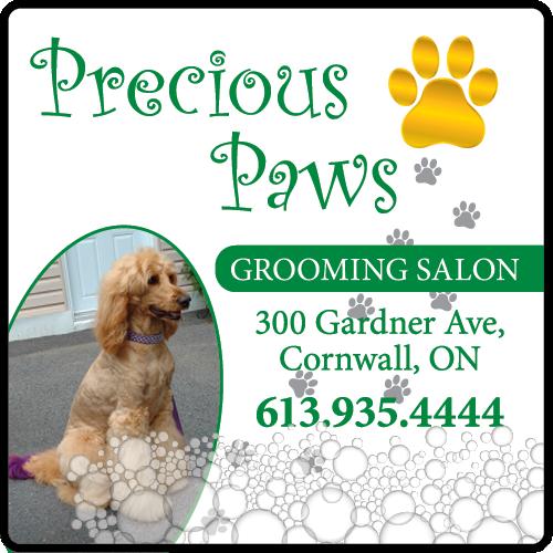 Precious Paws Grooming Salon - BAG-FD-CORN-ON-1