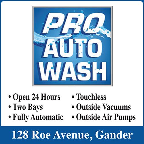Pro-Auto Wash - BAG-FD-GAND-NL-1