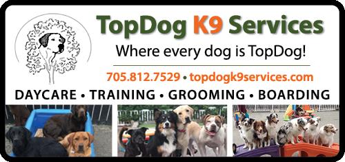 TOP DOG K9 SERVICES - BAG-HH-IBRD-INN-ON-2C